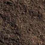 10-ziemia-pod-sadzonki-hortensji-bukietowej